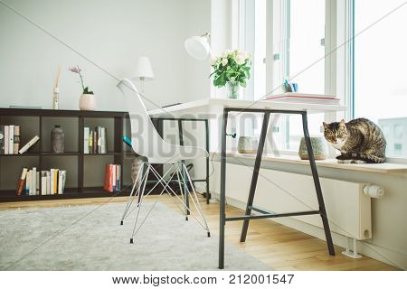 Clean contemporary monochromatic minimalist interior design.Home office room in Scandinavian style.Creative inspirational work corner with natural light business women freelancers