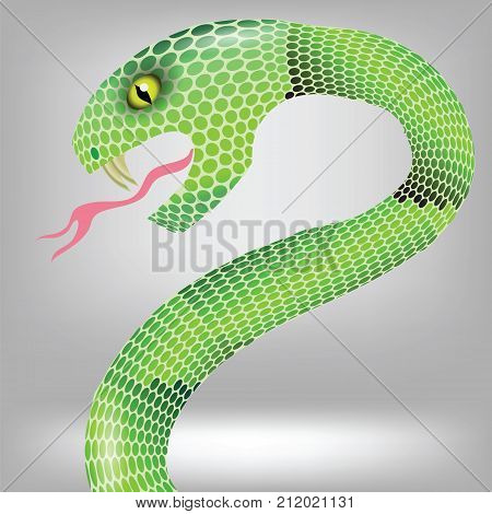 colorful illustration with green snake attack on grey background