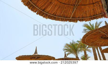Tropical beach and the beach sunshades umbrellas. Tropical sea resort beach recreation. Lazy summer vacation human behavior.