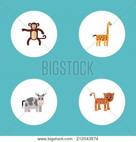 Flat Icons Kine, Panther, Camelopard And Other Vector Elements