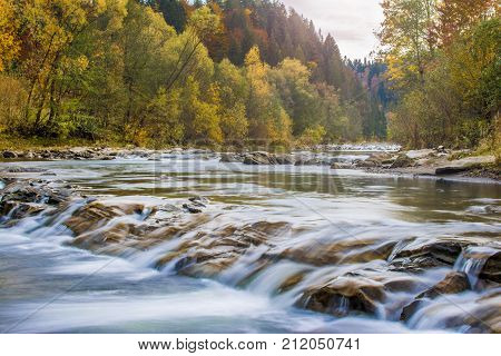 the river flowing among the autumn trees