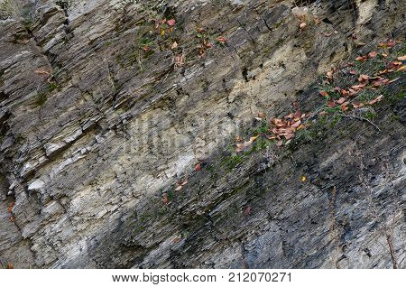Texture of an inclined stone strata with cracks, like a background.