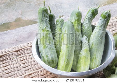 Raw Organic Cucumbers.Cucumber photo.Cucumber harvest.Agriculture, Natural Photo.
