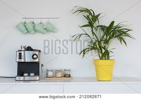 Coffeemaker, pot plant and mugs hanging on hook against wall