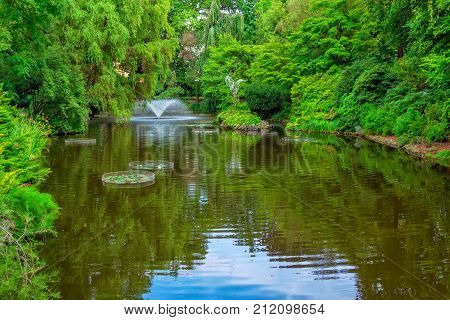 View of beautiful garden with fountain,  green trees, bushes and blue sky, reflecting in a pond water. Summer natural landscape