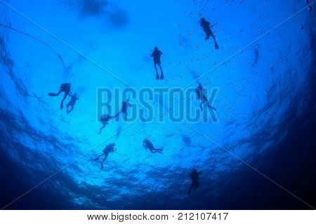 Scuba diving. Scuba divers silhouette underwater in ocean