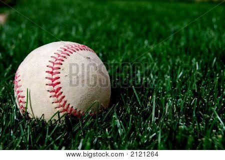 Baseball - Single Ball On Grass
