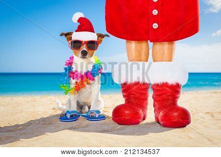 Dog And Owner As Santa Claus On Christmas At The Beach