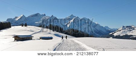 Snow covered mountains Schlauchhorn and Oldenhorn. Winter hiking and sledging trail. Scene near Gstaad Switzerland.