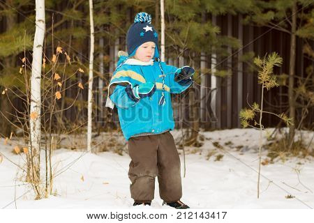 A child boy takes a walk in a winter forest (park) interested in twigs
