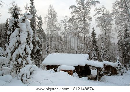 Hut of the hunter in the Siberian taiga in the evening in winter. House commercial hunter Sayan mountain forest in the evening at sunset . Snow-covered taiga in Eastern Siberia. Siberia Krasnoyarsk region Russia