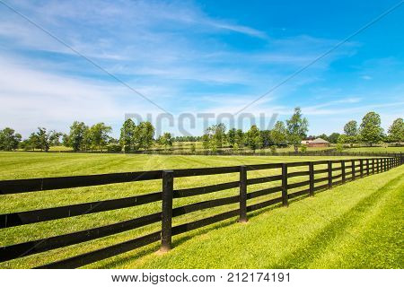 Black wooden fence and green pastures of horse farms.