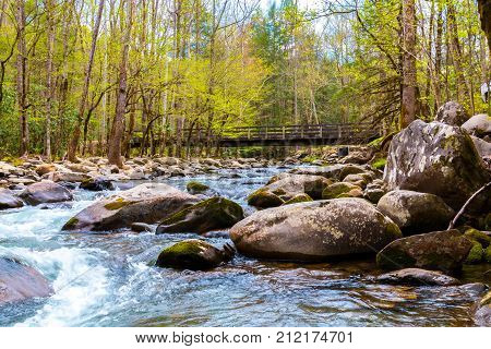 Forest river. Water cascades over rocks in Great Smoky Mountains National Park USA