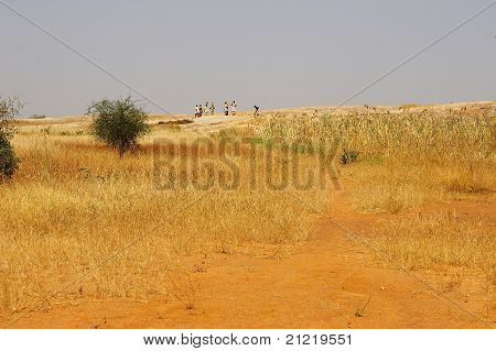 A group of people in African savanna