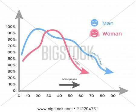 hormone and age infographic vector on white background