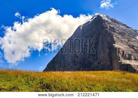 Majestic north face of Eiger mountain (3.967m - 13.015ft) in the Bernese Alps in summer. Kleine Scheidegg Bernese Oberland Switzerland.
