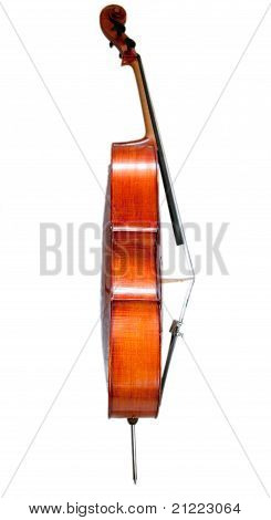 Cello side