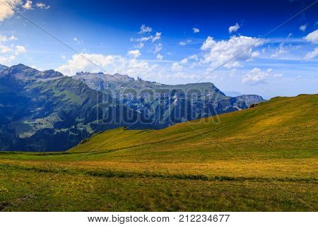 Stunning landscape in Bernese Alps in summer with lot of copy space. Lauterbrunnen Bernese Oberland Switzerland