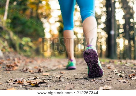 Woman walking and hiking in autumn forest sport shoes. Jogging trekking or training outside in autumn nature. Inspiring health and fitness concept.