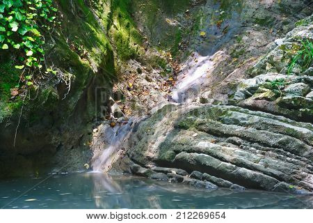 Small brook feeding a lake with stagnant water among the jungle forests