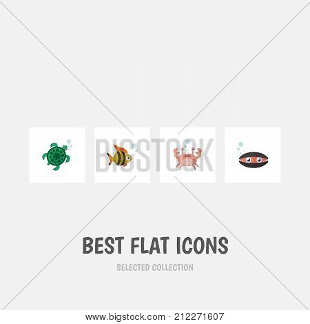 Flat Icon Nature Set Of Scallop, Seafood, Cancer And Other Vector Objects