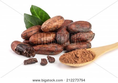 unpeeled cocoa bean with leaf and cocoa powder in wooden spoon isolated on white background.