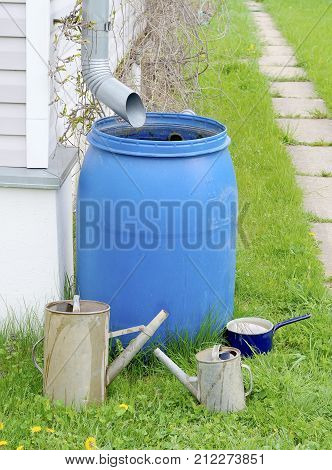 blue plastic barrel to drain rainwater out of the sewer pipes a small and a big old garden watering cans of galvanized metal and metallic blue pot on green grass in summer