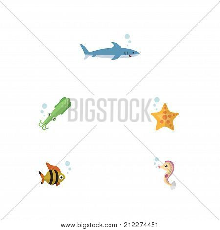 Flat Icon Marine Set Of Sea Star, Shark, Octopus And Other Vector Objects