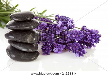 Stacked Black Steping Stones And Lavender Flowers