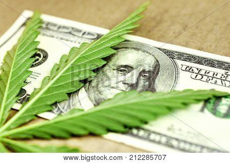 Money With Marijuana. Hundred Dollar Bill And Marijuana. Sheet Of Marijuana On A Hundred Dollar Bill