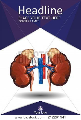 Medical cover template with Human low poly kidneys with vein and aorta suprarenal adrenal gland. Vector. Best for Portfolio Flyer Banner Website Brochure Annual Report Magazine Poster.