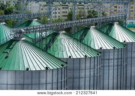 Silos for storage of grain, silo roof close-up. Warehouse of wheat and other cereals. View from above.