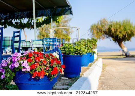 Greek vase with flowers in front of typical outdoor tavern placed by the seashore.