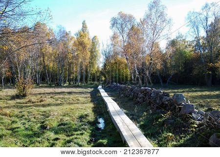 Wooden footbridge in a colored landscape by fall season