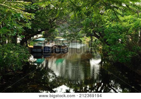 Overgrown channels in the Alleppey city centre with moored boats
