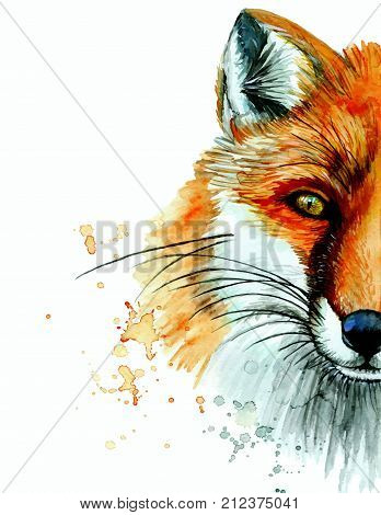 watercolor drawing of an animal mammal a fox predator, a red fox, a portrait of a fox, a sly, beautiful, on a white background for decoration and design