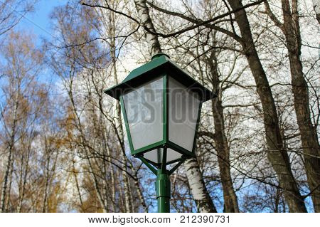 Birch Alley with beautiful street lamps in the estate of Leo Tolstoy in Yasnaya Polyana.