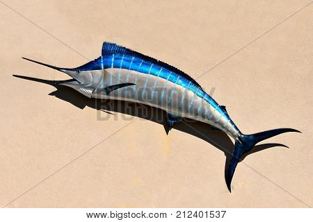 Blue Marlin Fish Mounted on Buildings exterior wall Florida, USA