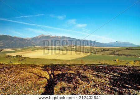 Autumn view of Tatra Mountains Baranec and Krivan from Haj - Nicovo near Liptovsky Mikulas. Autumn theme and colors. Mountains, fields, grass, shadows of trees and autumn leaves. Beautiful Slovakia.