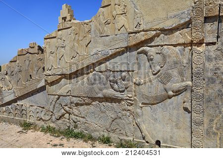Archaeological site ruined wall of Persepolis with relief a lion hunting a bull bas relief sculpture carving on a wall Iran.