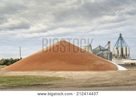 a large pile of sorghum grain in western Kansas in early November