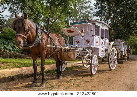 The old style horse cart at Pyin oo lwin, Myanmar.