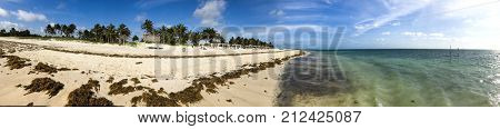 Ocean scene with white beach, palms and water