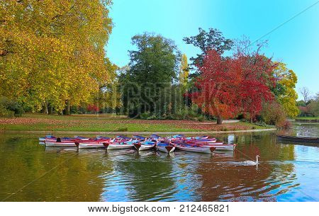 The Daumesnil lake is the largest lake in bois de Vincennes , Paris, France and poular destination for walks and rowboat excursions.