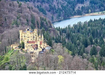 Looking down at Castle Hohenschwangua and the surrounding forest.