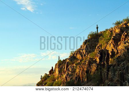 Morning view of a cliff side in the Sonoran Desert with copy space.