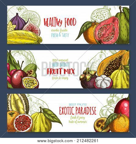 Exotic fruits banners templates of tropic fruit harvest for farm market or shop. Vector design of tropical juicy lychee, carambola or papaya and passion fruit maracuya or durian and grapefruit