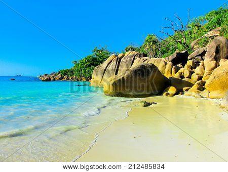 Island Getaway Surf