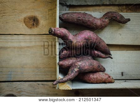 Freshly plucked purple color sweet potatoes collected in a wooden crate in farmer's shop. Close up view from top.