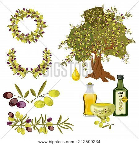 Olive oil and berries green tree organic vegetarian natural ripe healthy branch fresh ingredient fruit plant vector illustration. Cooking nature bottle virgin olive oil food.